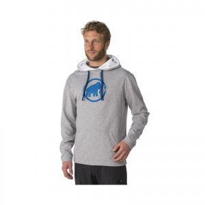 Bluza Mammut Logo ML Hoody Men
